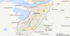 Top colleges for MBA in Nellore